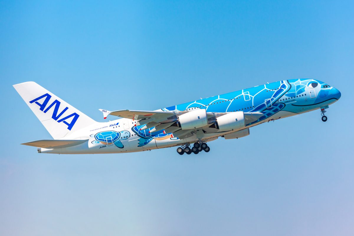 A Hawaiian experience! ANA carries out sightseeing flight with Flying Honu